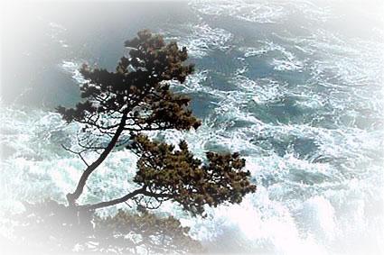 Байкал- застывшее падение