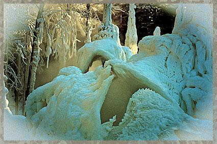 Причудливый узор зимы