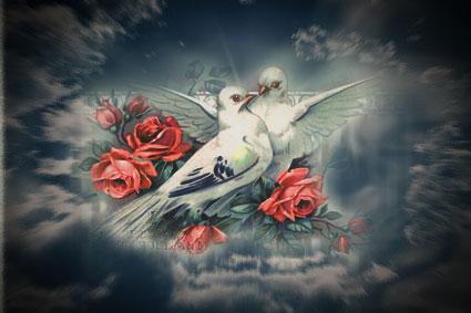 Кто кого любит,  тот того и голубит.